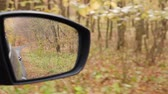 Autumn forest reflected in the mirror of a car cruising on road Stockvideo