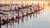 establishing shot : Establishing shot of boats at a marina. Cinematic shot. Stock Footage