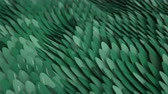 crocodilo : 4K Abstract Scales. Seamless Looping Animation Stock Footage