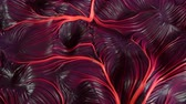 bruto : 4K Abstract Muscle Tissue. Seamless Loop