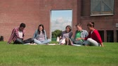 university : Students chatting together sitting outside on college campus