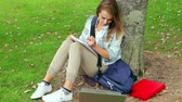 Student studying and leaning against a tree on college campus Wideo