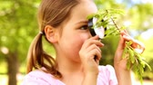 lente : Little girl looking at plant through magnifying glass on a sunny day Vídeos