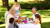 prato : Happy family having a barbecue in the park together on a sunny day Stock Footage