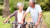 велосипед : Retired couple standing in the park with their bikes on a sunny day