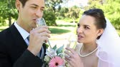 novomanželka : Happy newlyweds toasting with champagne by the wedding cake on a sunny day Dostupné videozáznamy
