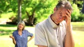aborrecido : Couple not talking after a dispute in the park on a sunny day Stock Footage