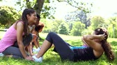 em linha : Fitness class doing sit ups in the park on a sunny day Stock Footage