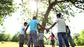 closeness : Young people holding hands in a circle on a sunny day Stock Footage