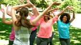 стройный : Zumba class dancing in the park in slow motion