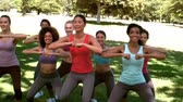 desportivo : Fitness class doing squat sequence together in slow motion