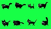 карикатура : Walking cartoon black cats. Looped animation on green screen. Funny collection of cute pet characters.