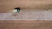 katoenplant : Aerial view of a Large green Cotton picker working in a field.
