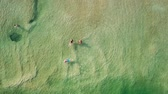Ürdün : Top down aerial footage of people floating in the salty water of the Dead Sea, Israel.