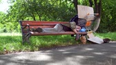 dakloze : Footage with old drunk tramp, sleeping on bench in the street. Stockvideo