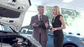 autohändler : Vehicle dealer Explaining car specifiaction to young woman. Videos