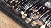 aplicador : Top view close up image of beauty makeup brushes set. Fashion concept.