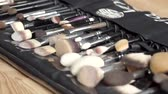 aplicador : Professional makeup concept. set of brushes on woden table.
