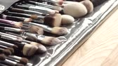 set : Set of accurately fixed makeup brushes. Beauty concept.