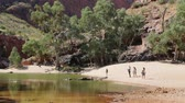 kings canyon : in australia natuarl kings canyon and the river near the mountain in the nature Stock Footage