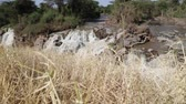 eroze : in ethiopia africa the awash national park and the falls nature wild Dostupné videozáznamy