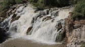 nilo : in ethiopia africa the awash national park and the falls nature wild Stock Footage