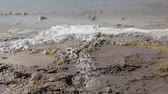 geology : boiling mud in danakil ethiopia africa the volcanic depression of dallol and pole ale