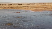 danakil : the black lake with boiling oil and hot Stock Footage