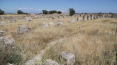 prehistorický : in northern cyprus the antique city and ruins of salamina history and tradition