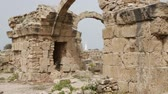 coluna : in cyprus antique ruins
