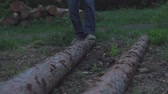 steps on a lying tree Stock Footage