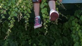 kolano : childrens legs dangle against the background of green plants, balcony