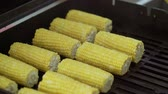 konyhai : Cooking corn on grill closeup