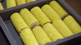 yemek pişirme : Cooking corn on grill closeup