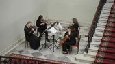 enstrüman : SAINT-PETERSBURG, RUSSIA - OCTOBER 1, 2017: Group of woman playing string instruments indoors Stok Video