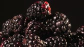 amoras : Blackberries on black background close up isolated Vídeos
