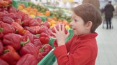 rode paprika : little boy in supermarket smelling red bulgarian peppers. Shopping in store, fresh products for kitchen and cooking. Stockvideo
