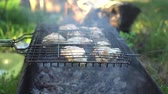 char grilled : Grilled chicken on the grill