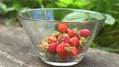Glass bowl with fresh organic strawberries in old english garden with green background Summertime Stock Footage