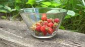 Close up of glass bowl with fresh organic strawberries in old english garden with green background Summertime