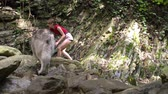 привлекательность : Barefoot girl with malamute dog walks in mountain wood on the river