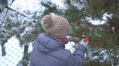 alasca : Attractive woman sawing pine branches in her winter snowy garden for Merry Christmas and Happy New Year