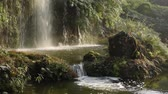 Waterfall with soft sunlight in Chengdu, China Stock Footage