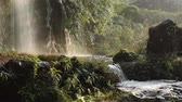 chengdu : Waterfall with soft sunlight in Chengdu, China Stock Footage