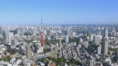 Tokyo panorama of the city from a height