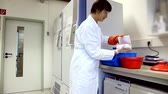 ivf : Freezing bacterial samples in biological samples genetics laboratory Stock Footage
