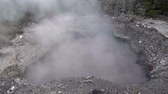 tapu : Mud volcanoes and hot lakes Rotorua in New Zealand. Underground source of natural hot water