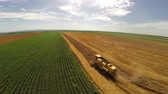 helicóptero : Aerial flight over combine harvesting the yellow wheat rows Stock Footage
