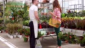 agricultura : young florist sale flowers in glassgarden Stock Footage