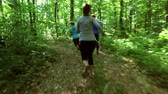 outdoor pursuit : Runners - running jogging in forest. People training, running, jogging, fitness, runner-4k video